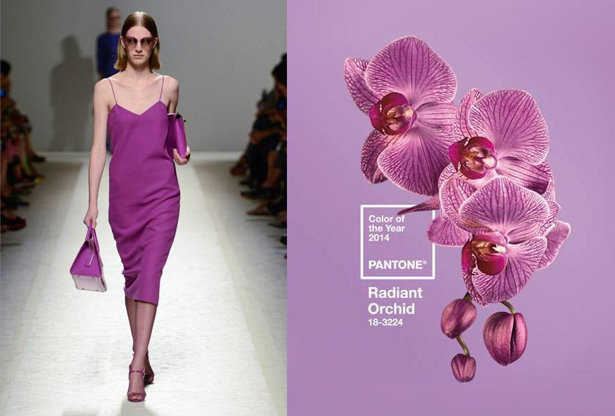 Max Mara dress in Radiant Orchid Pantone color