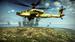 Apache Image 4