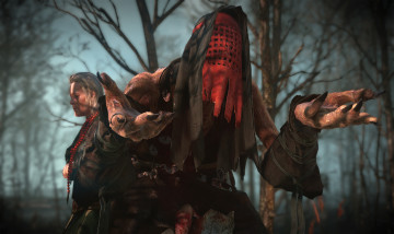 2624273-the_witcher_3_wild_hunt-witch_1407869459