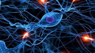 1478080627_deep_learning