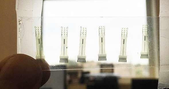 Glassy carbon electrodes