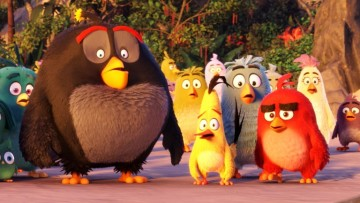 1495455074_angry-birds-movie-01