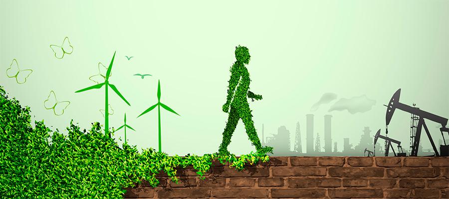 Mercado na Área Ambiental