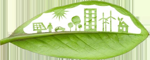 A Gestão Ambiental no Brasil