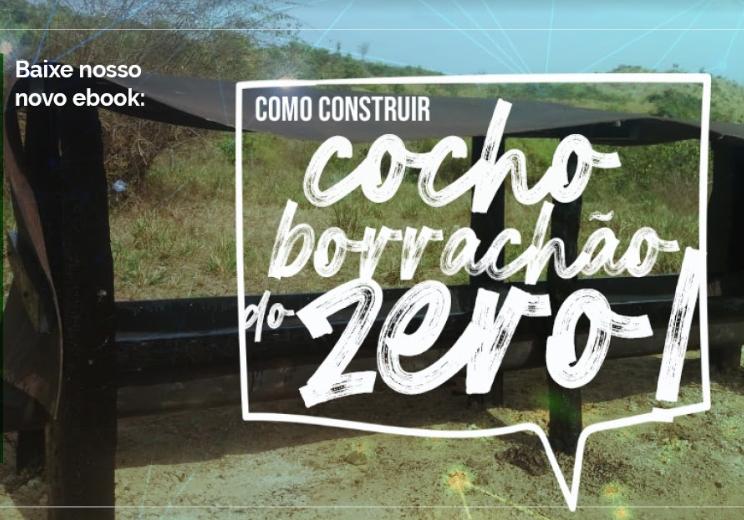 Projeto: Aprenda a fazer um cocho de borrachão do Zero!