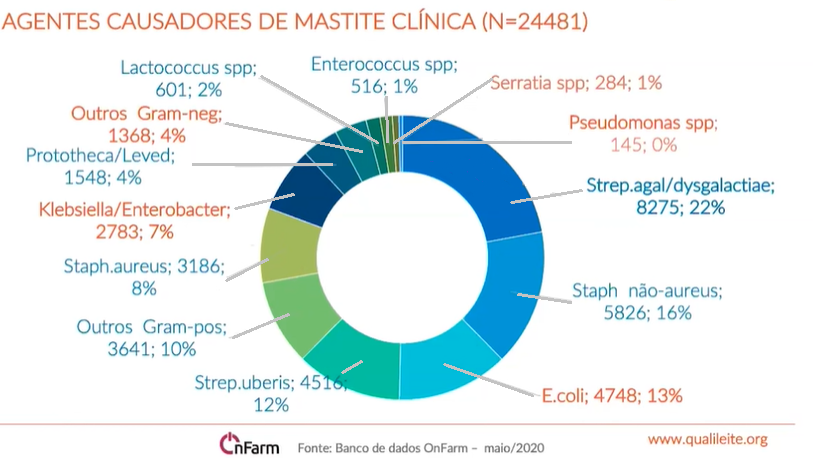 Mastite clinica