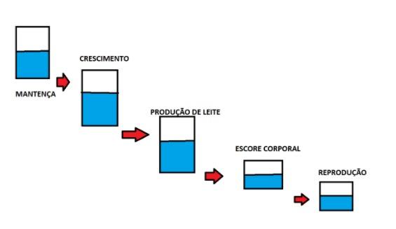 iatf com software de gestão para fazenda