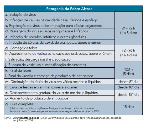 patogenia da febre aftosa
