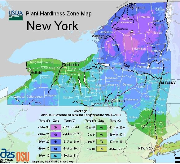 New York Climate Change Science Clearinghouse Map New York on east coast map, michigan map, tennessee map, manhattan map, kansas map, minnesota map, nyc map, maryland map, california map, indiana map, nebraska map, north carolina map, texas map, alabama map, utah map, montana map, florida map, maine map, mississippi map, ny map, long island map, oklahoma map, nj map, ohio map, jfk airport map, new hampshire map, wisconsin map, bronx map, brooklyn map, pennsylvania map, new jersey map, nevada map, missouri map,
