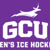 Mens ice hockey