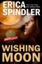 Cover Image: Wishing Moon
