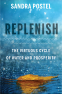 Cover Image: Replenish