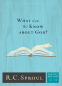 Cover Image: What Can We Know about God?