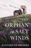 Cover Image: The Orphan of Salt Winds