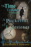 Cover Image: The Time Traveler Professor, Book Two: A Pocketful of Lodestones