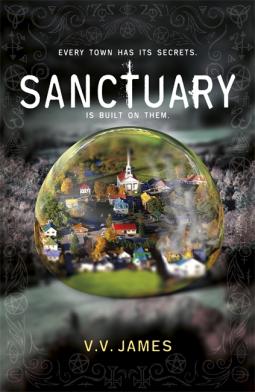Sanctuary V V James 9781473225732 Netgalley
