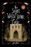 Cover Image: The Secret of White Stone Gate