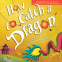 Cover Image: How to Catch a Dragon