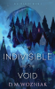 Cover Image: The Indivisible and the Void