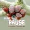Cover Image: Wait, Rest, Pause
