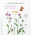 Cover Image: Embroidered Wild Flowers