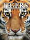 Cover Image: Tigers