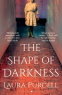 Cover Image: The Shape of Darkness