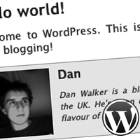 Build a wordpress plugin to add author biographies to your posts