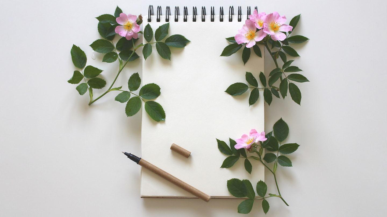 Dear Diary, Thank You