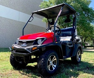 New Trailmaster Taurus 200G UTV, Gas Golf Cart