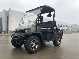 Trailmaster Taurus 200 MFV EFI (Side By Side) UTV