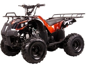 "Kodiak-Hd 110Cc Youth Atv - Big 16"" Tires Assembled"