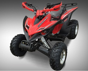 Vitacci FLYING MACHINE 200cc ATV