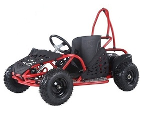 Taotao Ek80 800 Watt  / 48V Electric Go Kart