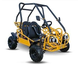New Kandi (KD-125FM5) 125Cc Go Kart, 4-Stroke Semi-Auto W/Reverse
