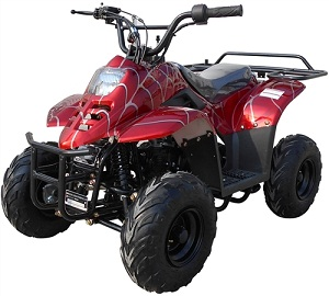 ICE BEAR 110CC YOUTH ATV AUTOMATIC W/REVERSE REMOTE CONTROL