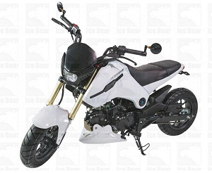 ICE BEAR FUERZA 125CC STREET BIKE MOTORCYCLE (PMZ125-1)