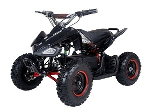 TAOTAO E1-500 500 Watt 36 Volt Electric Four Wheeler ATV