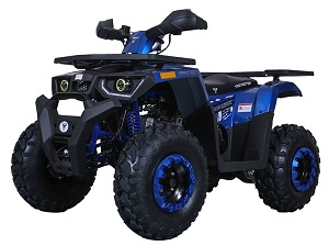 Taotao Raptor 200,169Cc,Air Cooled, 4-Stroke, 1-Cylinder, Automatic