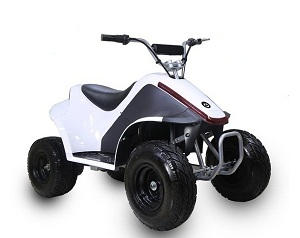 TaoTao ROVER500 500 Watt ATV, Brush Electric Motor