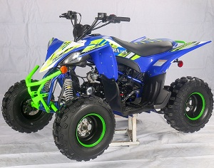 New Vitacci Pentora 125Cc ATV, Air Cooler, 4 Strokes, Automatic With Reverse