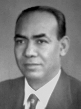 أحمد حماد الحسيني
