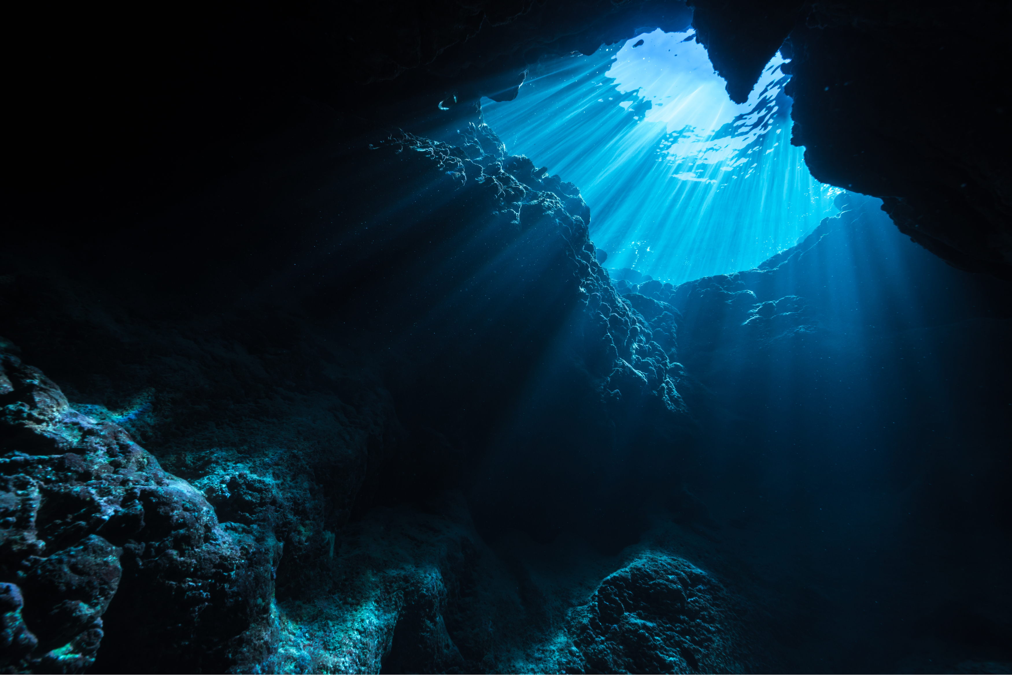 The Global Race for Critical Minerals in the Deep Ocean