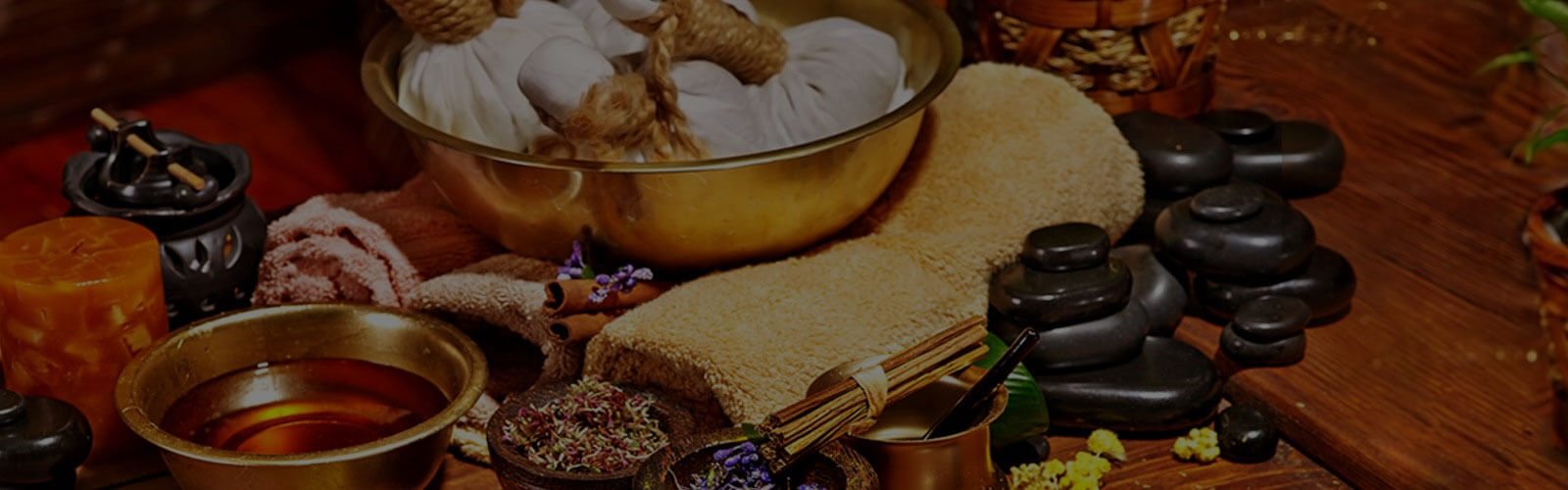 The Ayurveda Experience Blog