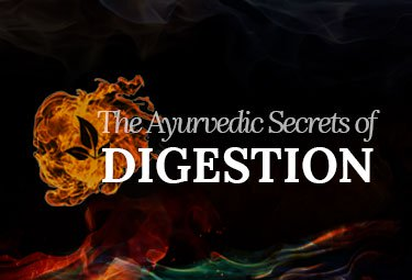 The Ayurvedic Secrets of Digestion