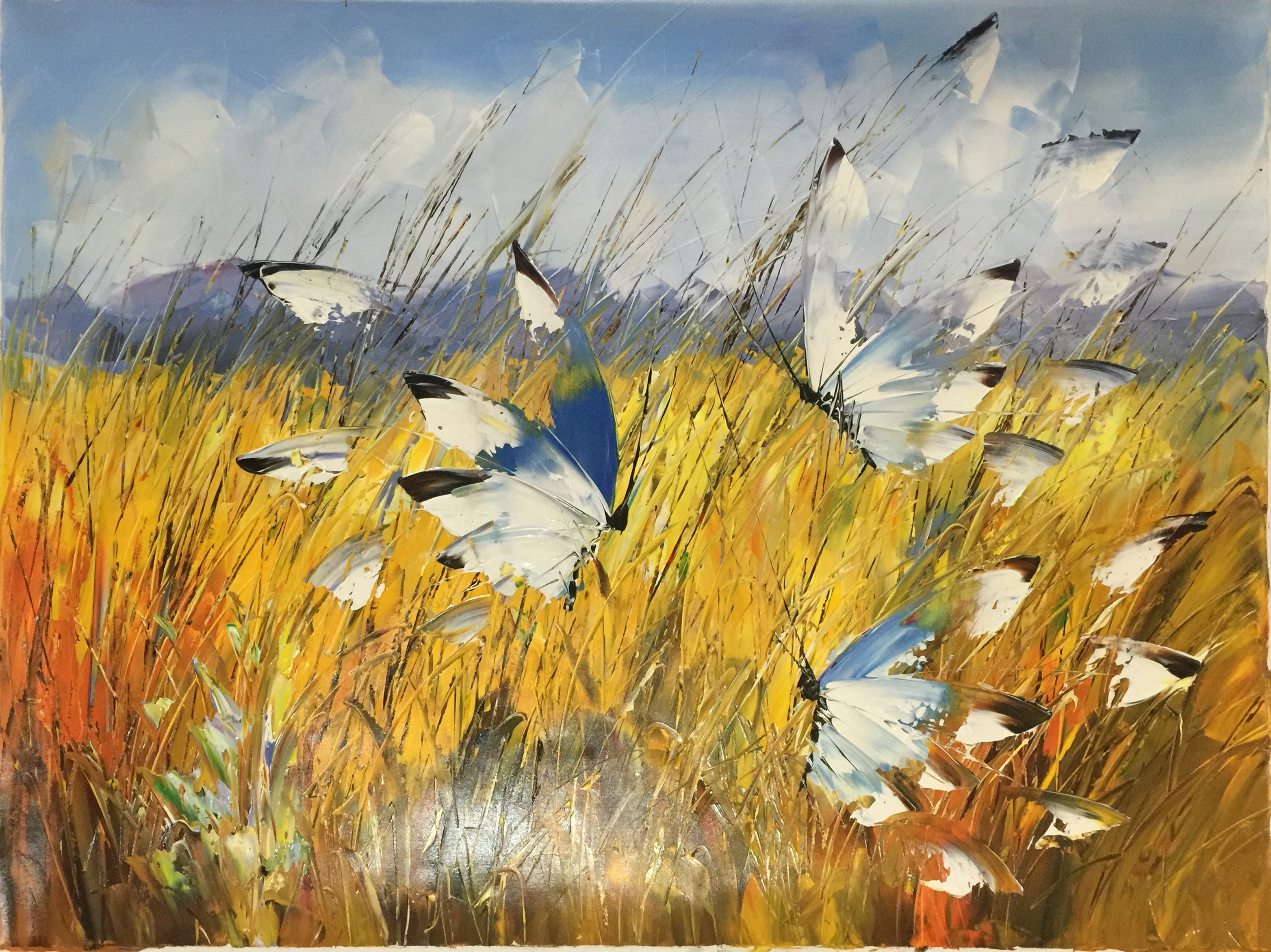 Butterflies in the field