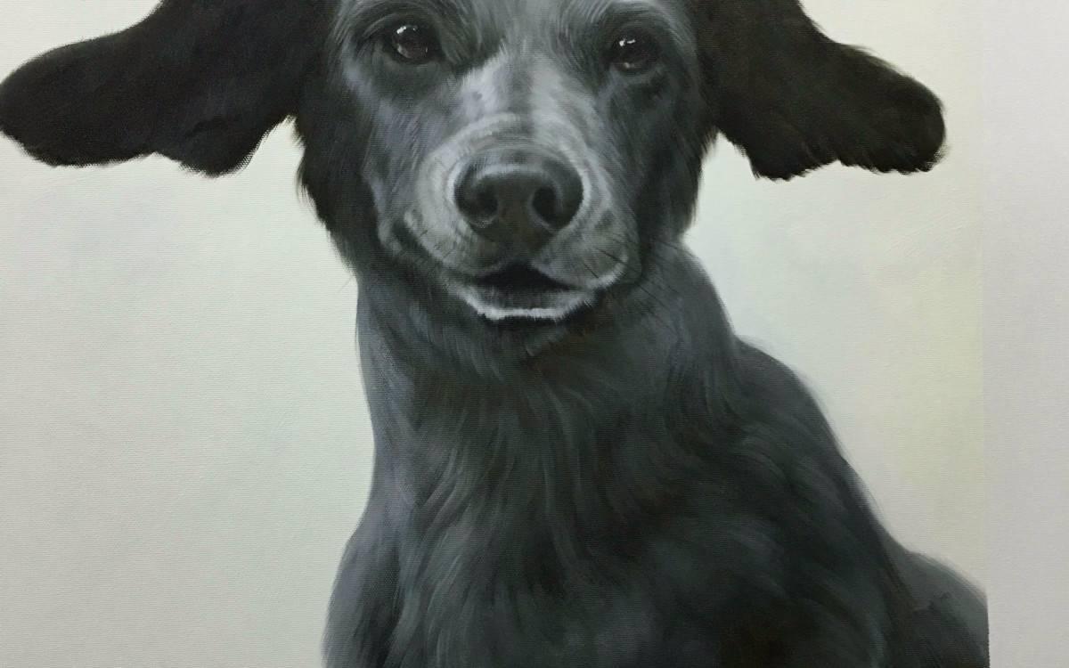 Hund malen lassen