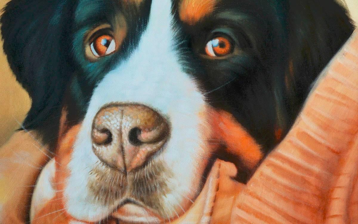 Hundezeichnungen