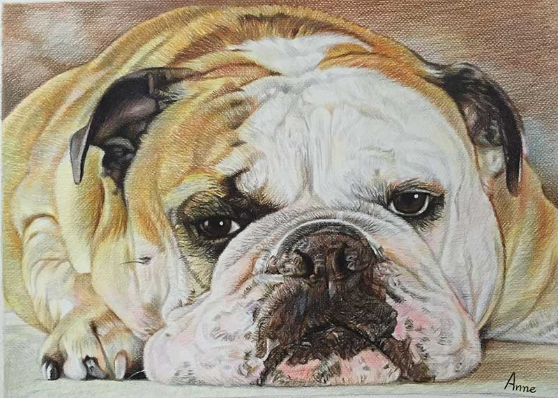 big detailed oil painting of a british bulldog