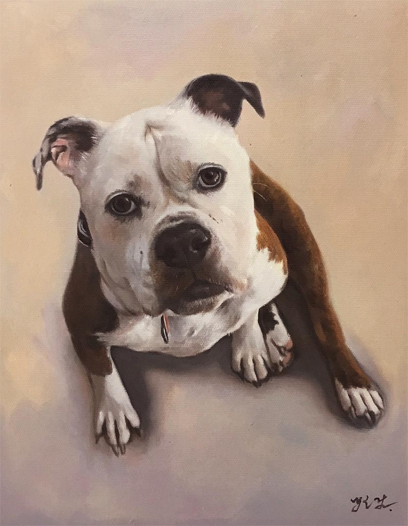 custom dog art of British bulldog sitting